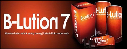 Jasa Pembuatan Web Support B-lution7